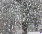 Pronósticos 24 - 28 Junio: ¿Cuánta nieve caerá?