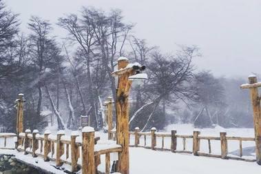 Tierra del Fuego cubierta de nieve y Cerro Castor, listo para empezar temporada el 29/06