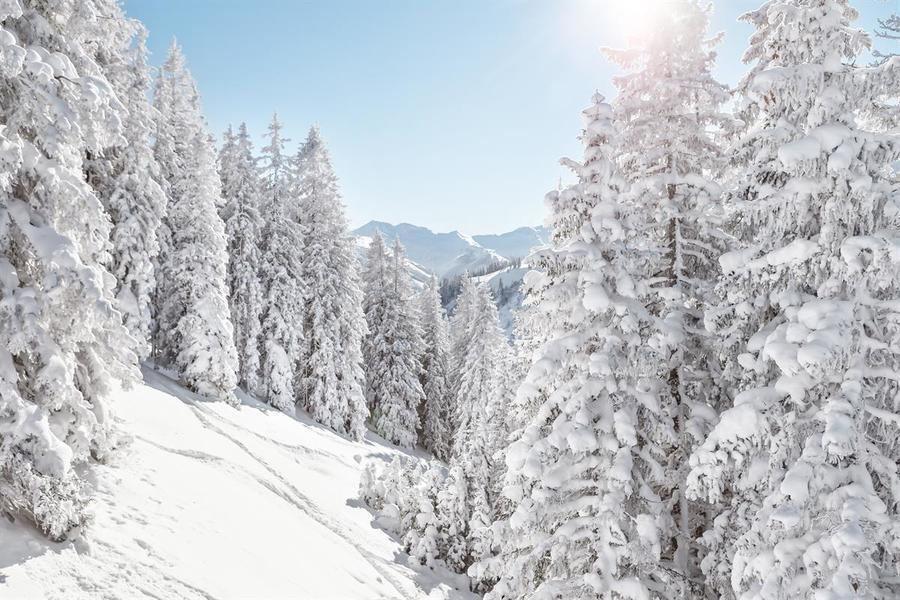 SAALBACH: 270 km de dominio esquiable
