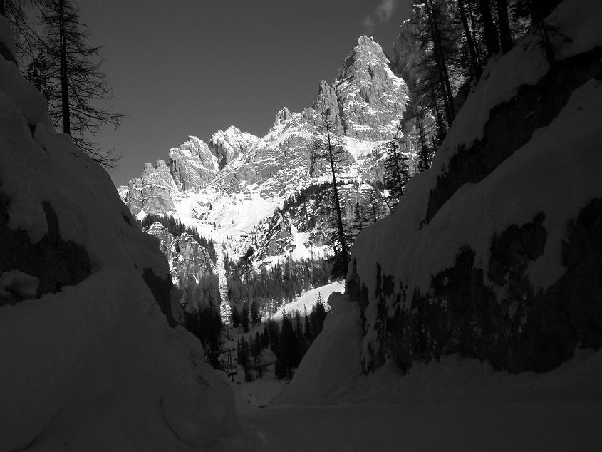 Cortina 2008 una navidad resumida en blanco y negro - Cortinas en blanco y negro ...