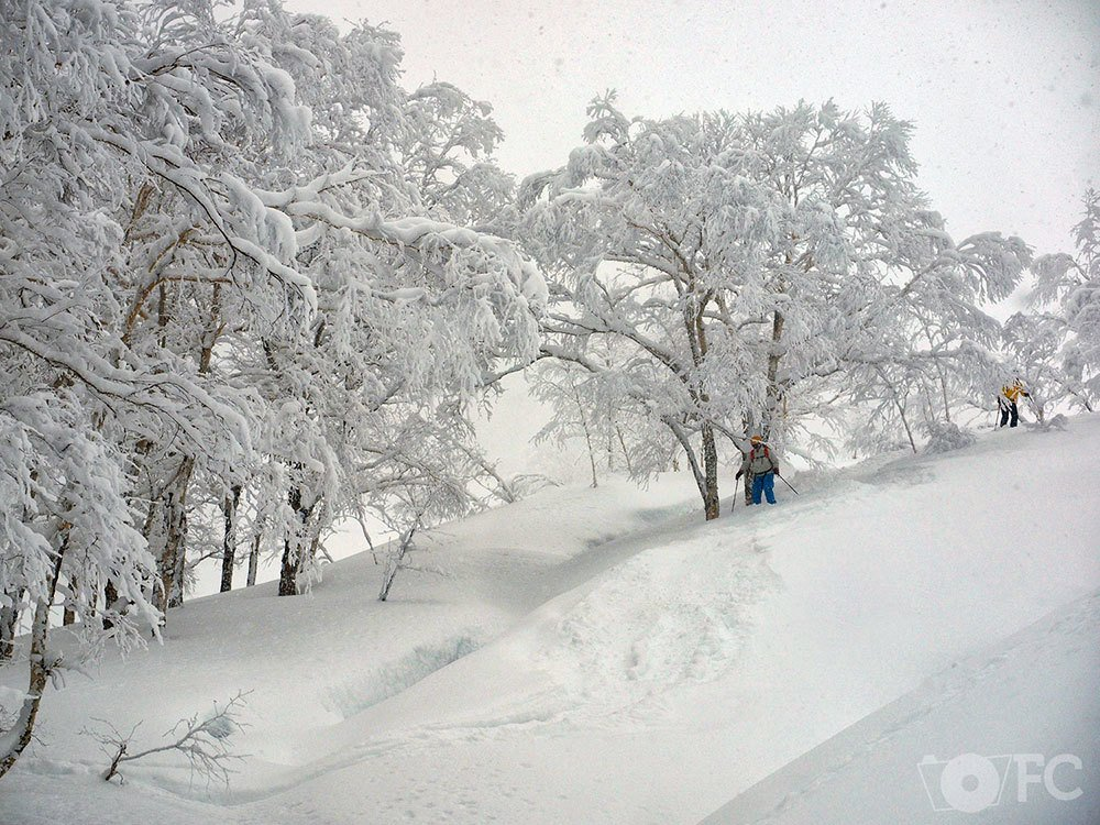Ski Japón