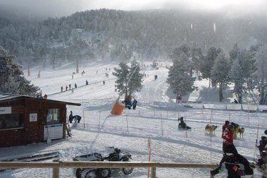 Per fi arriba la neu!!!