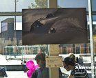 Skimetraje expone las 15 mejores fotos del certamen 2014