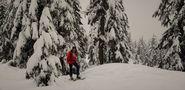 Monte Seymour Columbia Britanica Canada,
