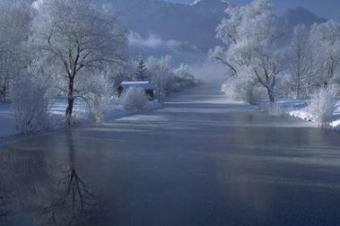 Preciosas imágenes nevadas