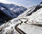 424.848 euros para reforestar Fuentes de Invierno