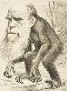 Darwinvive