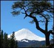 Snowboard de montaña en el volcán Antuco 2979 m (Chile)