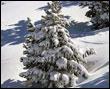 Postales de Invierno  (Fotos)