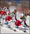 La técnica en competición, el slalom especial.