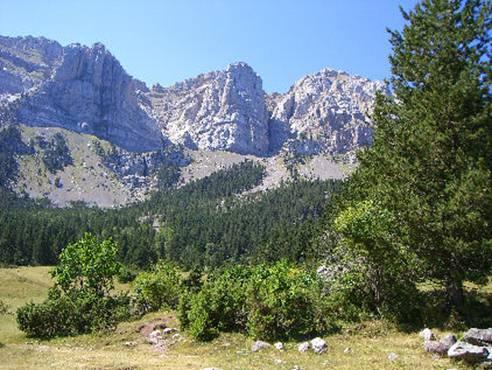 Vacaciones en el pirineo catal n reportajes - Casas rurales en el pirineo catalan ...